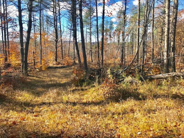 GILMANTON NH  LAND  for sale $62,000