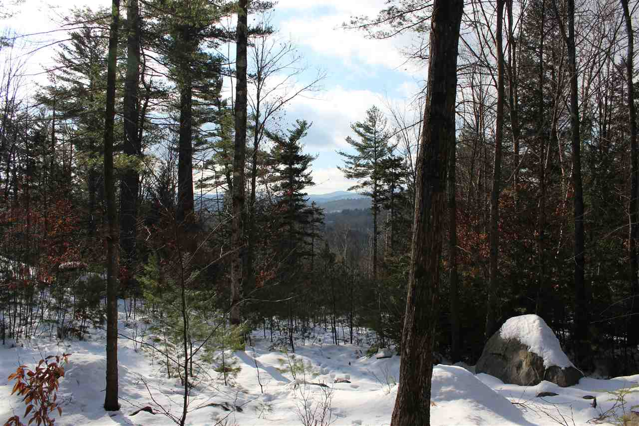 Baltimore VT 05143Land for sale $List Price is $99,000