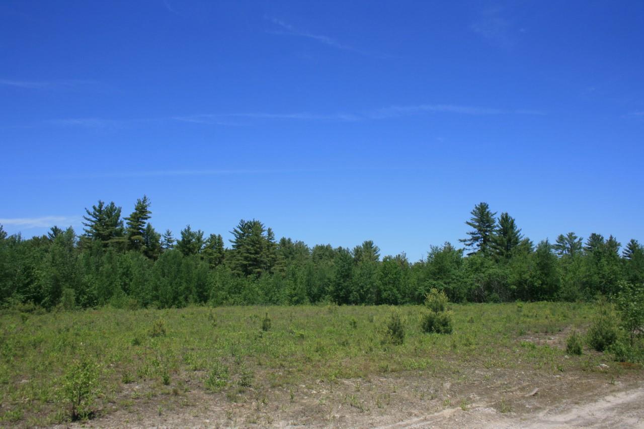 NEWPORT NHLAND  for sale $$29,900 | 1.62 Acres  | Price Per Acre $0