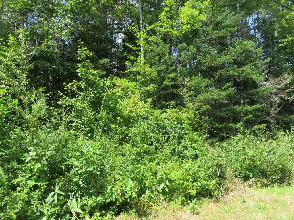 CANAAN NH LAND  for sale $$14,500 | 0.5 Acres  | Price Per Acre $0