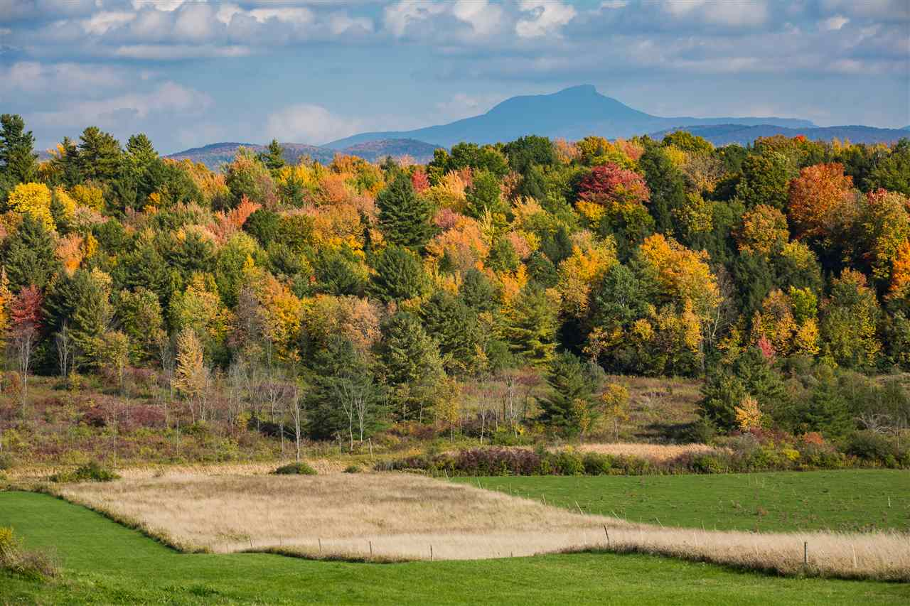 "This 130.9 Acre Parcel is located in a prime location in Charlotte Vermont with elevated 180 degree views to the Green Mountains. With clearing there will be strategic views west to Adirondacks. This rare piece of land has good soils for septic capability. Meadows, woodlands, streams and a beautiful pine forest.  Build your dream home and have land to create a sustainable lifestyle or simply enjoy.  The build sites are high on the ridge while the incredible low areas are stunning as quoted by a Vermont Naturalist that has been on site: ""The multiple sunny meadows on the south and north side are beautiful. The wetlands that surround the streams running through the center of the property are gorgeous with a mix of sedge meadows and shallow marshes. The hemlock dominated forest on the east side of the stream is majestic dotted with pools of water- these tracks of land used more by wildlife then people are the exception to the norm in Charlotte.  The forested streams and intact wetlands also protect water quality and support the health of the Laplatte River which runs nearby"" - end quote from the naturalist.  Currently the owners have the Laplatte Organic Beef Cattle grazing a portion of the land for Vermont Current Use Tax Benefits.  The land may be subdivided into three lots only per the family wishes.   A once in a lifetime property and 20 minutes to downtown Burlington Vermont.  With a subdivided lot  - this will facilitate infra structure expenses."