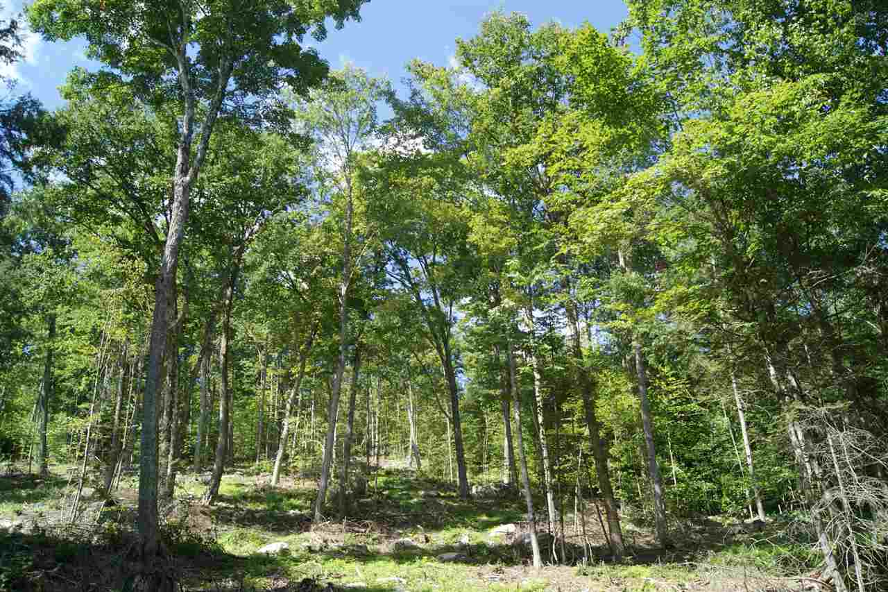 CANAAN NHLAND  for sale $$662,000 | 412 Acres  | Price Per Acre $0  | Total Lots 13