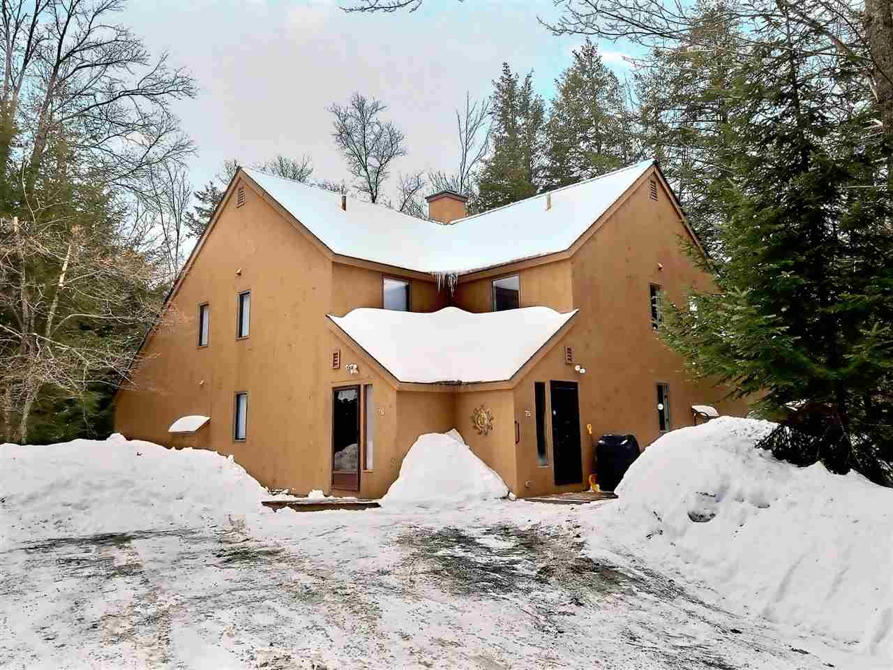 Village of Eastman in Town of Grantham NH  03753Condo for sale $List Price is $199,000