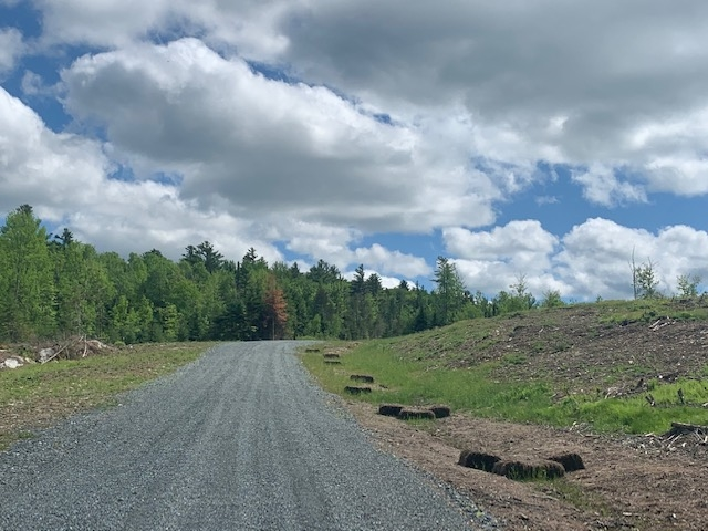 Lot 3 Gannon Littleton, NH 03561 4735431