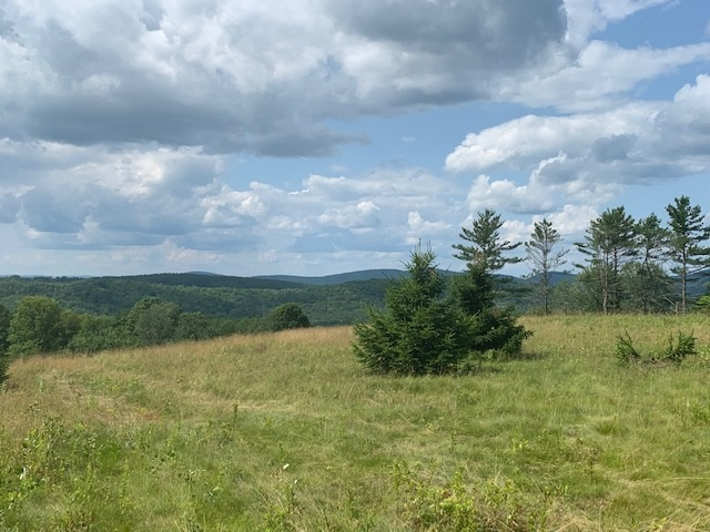 Lot 2 Gannon Littleton, NH 03561 4735434