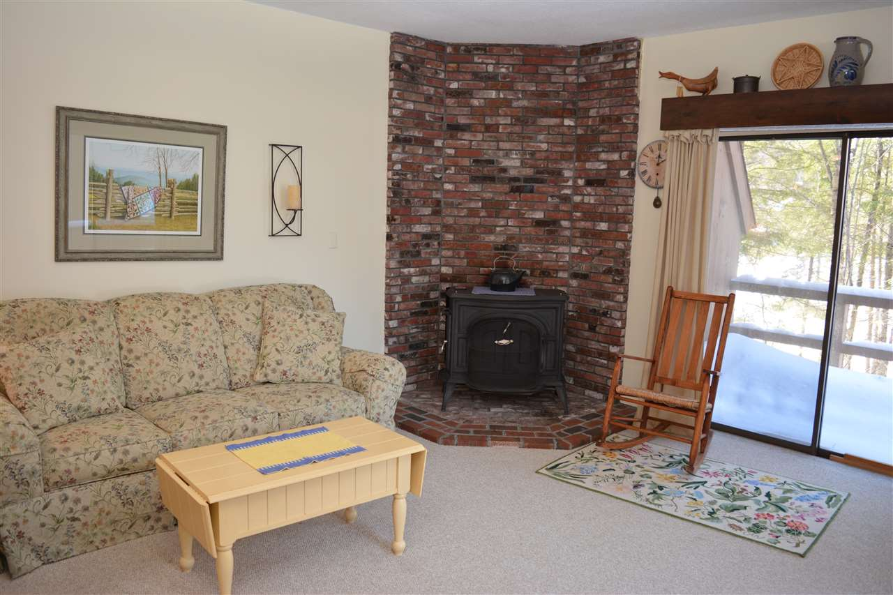 Village of Eastman in Town of Grantham NHAll Apartments and Housing  for sale