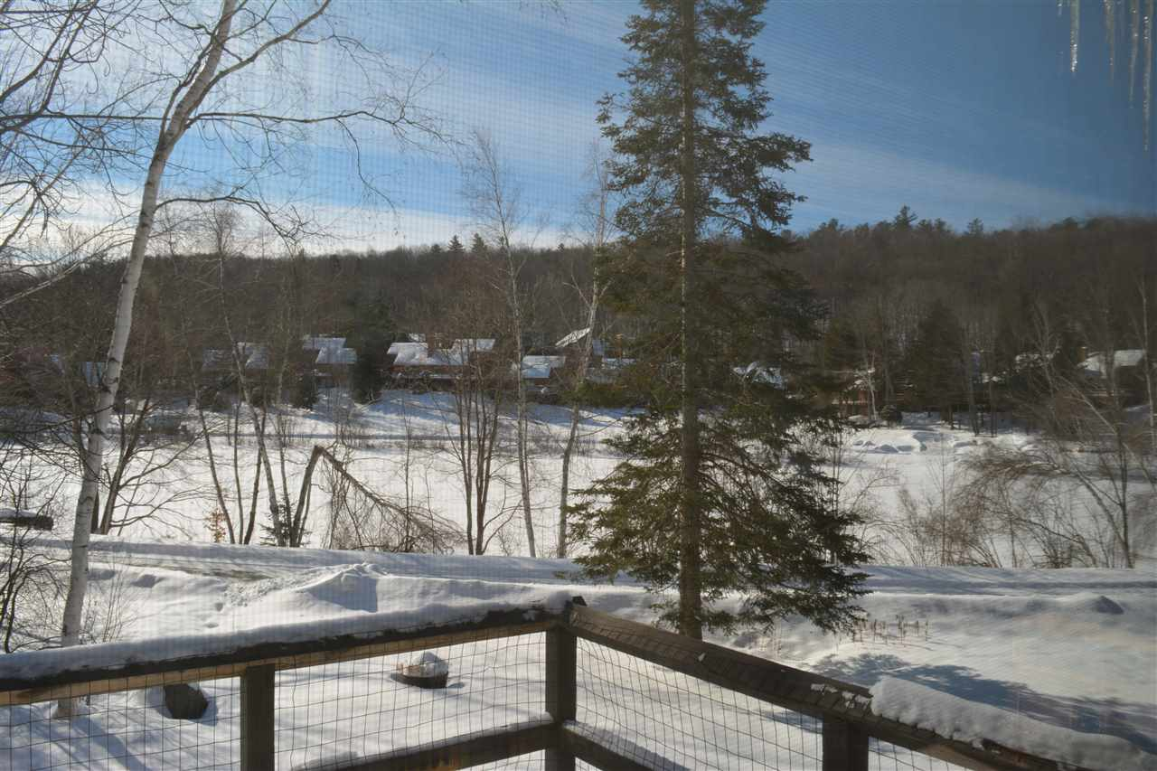 Village of Eastman in Town of Grantham NH  03753 Condo for sale $List Price is $239,999