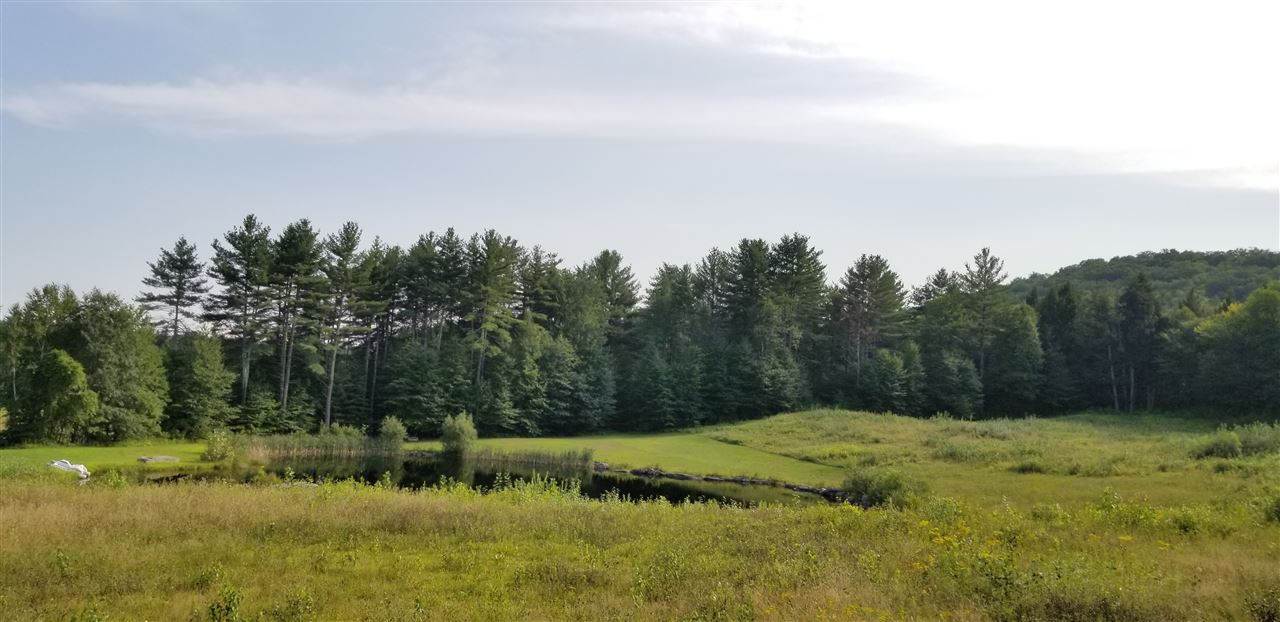 Village of Weathersfield in Town of Weathersfield VT  05151Land for sale $List Price is $159,000