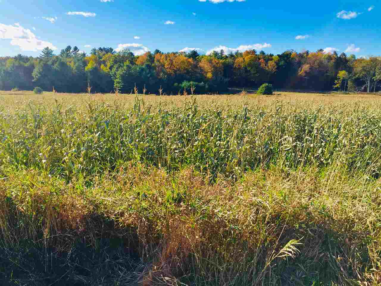 Beautiful 17.9 acre building lot in Shelburne.  Ready to build, Lot 2, part of a 2-lot private community, boasts level agriculture/pasture land.  Site will include a new gravel access road with underground electrical and internet service lines on site.   State approved waste water permit (WW-4-2651-1) in place.  This parcel is close to Shelburne Pond (fishing, skating, boating), walking trails and the VAST trail.  Easy access to Rt. 116, Burlington International Airport, UVM Medical Center and CVU.  Other building lots also available.