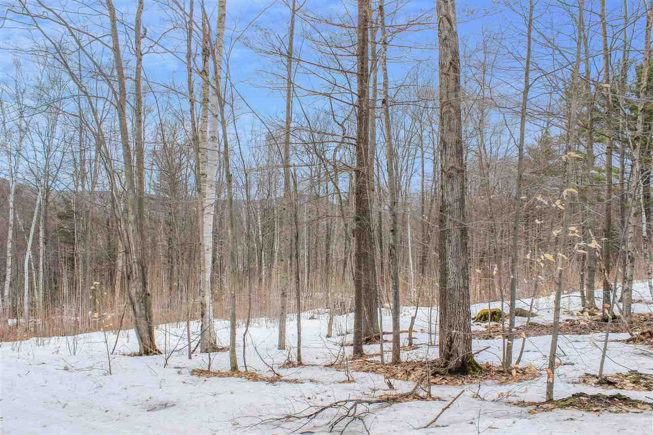 MLS 4745891: 00 Thompson Street, Ashland NH