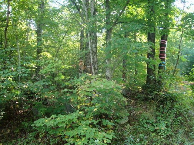 DORCHESTER NH LAND  for sale $$48,000 | 15.8 Acres  | Price Per Acre $0  | Total Lots 2