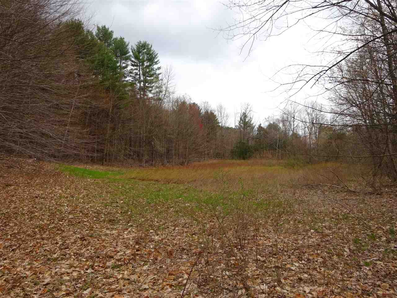 Weathersfield VT 05151Land for sale $List Price is $95,000