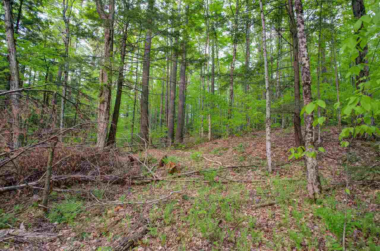 Woodstock VT Land  for sale $List Price is $52,500