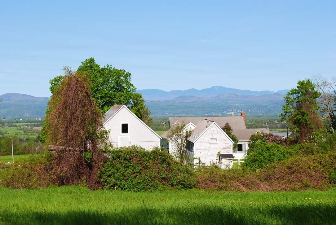 Bridport VTHorse Farm | Property