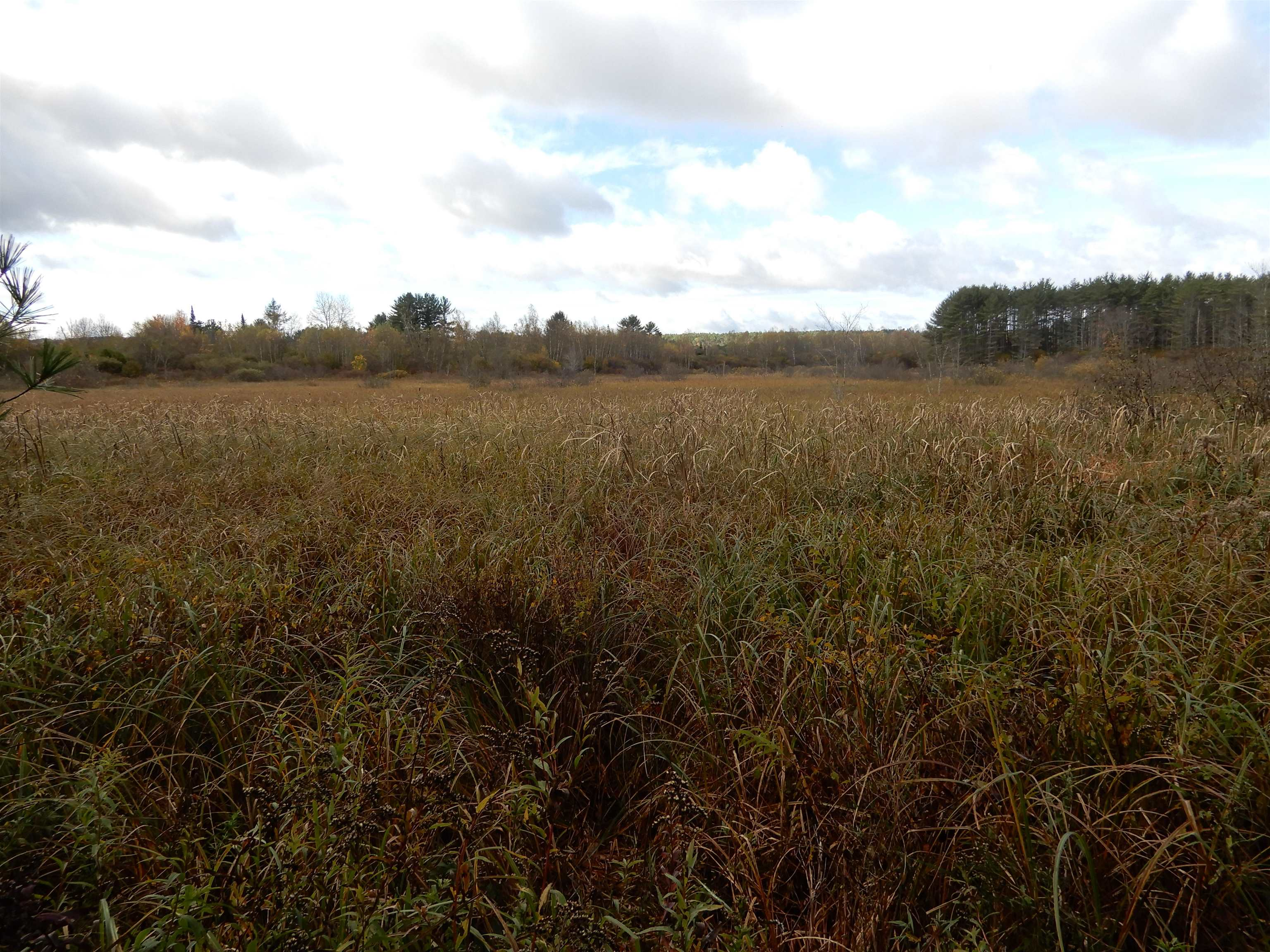 CANAAN NH LAND  for sale $$84,900 | 10 Acres  | Price Per Acre $0  | Total Lots 2