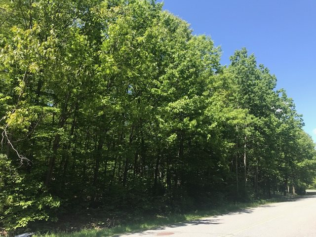 Village of Quechee in Town of Hartford VT Land  for sale $List Price is $35,000