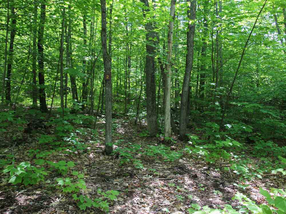 MLS 4757906: Lot #1 Ridge Road, Ashland NH