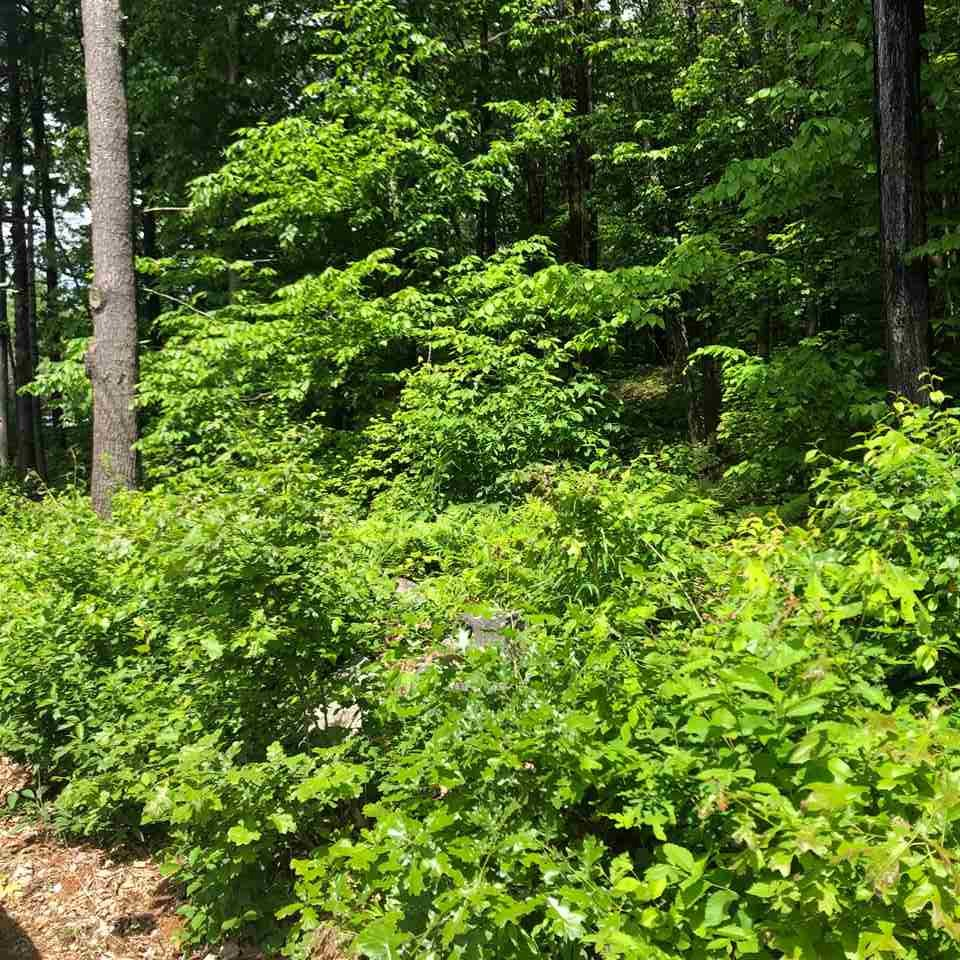 BOSCAWEN NH LAND  for sale $$55,000 | 0.46 Acres  | Price Per Acre $0