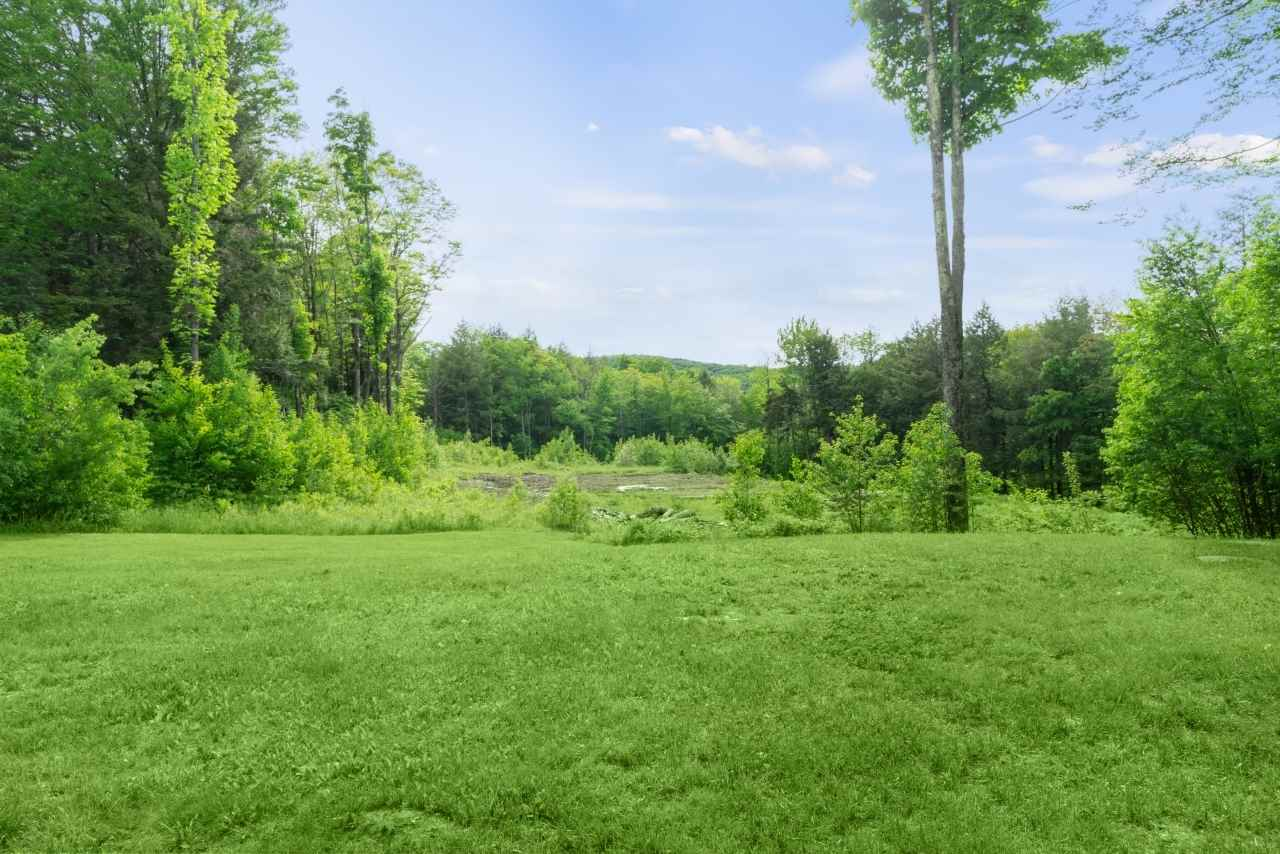 View from the Side Yard, looking towards open pasture