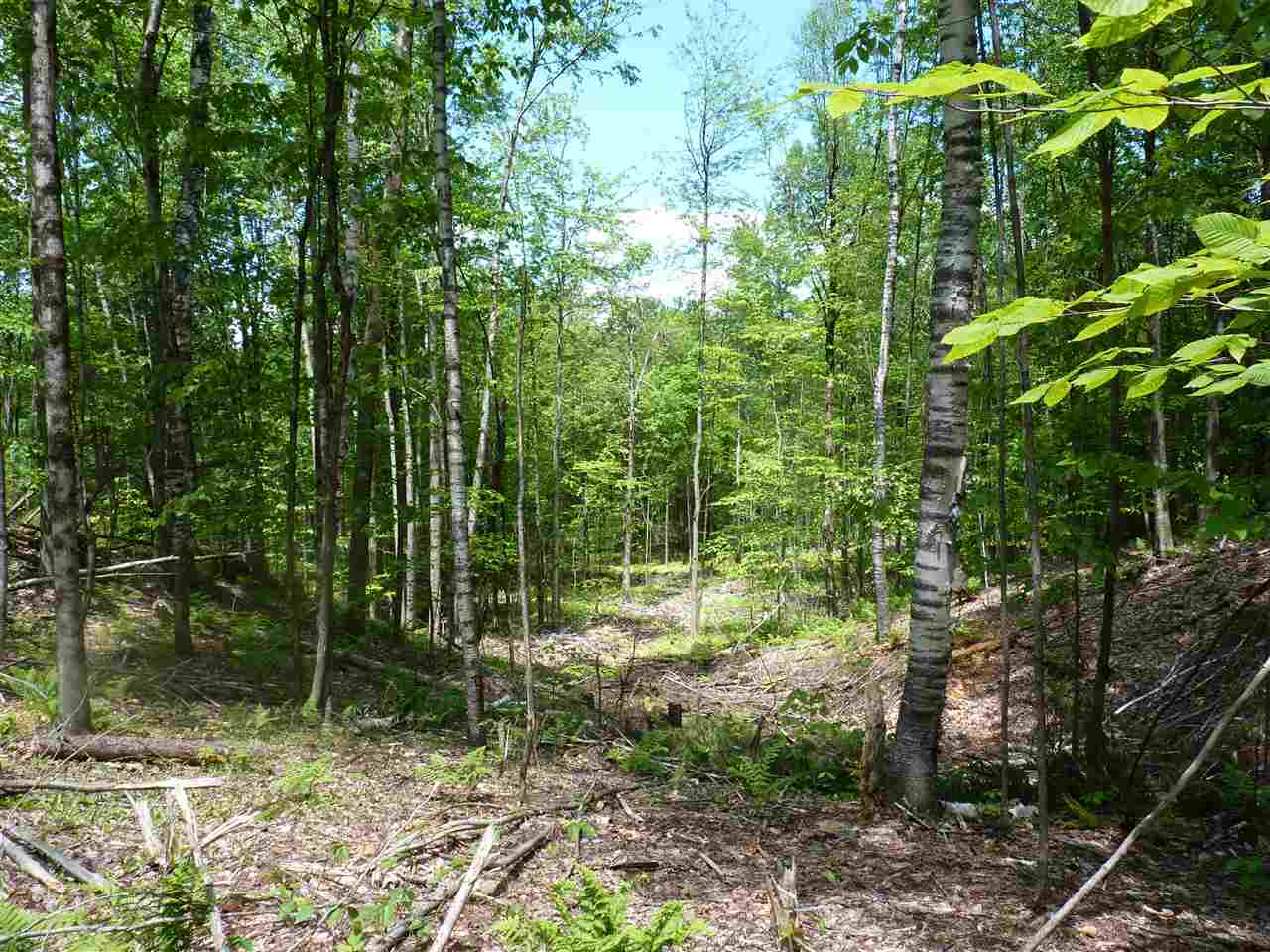 CHARLESTOWN NHLAND  for sale $$110,000 | 83.96 Acres  | Price Per Acre $0