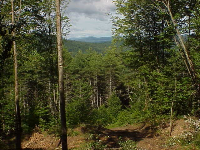 HARTFORD VT LAND  for sale $$39,000 | 15.39 Acres  | Price Per Acre $0
