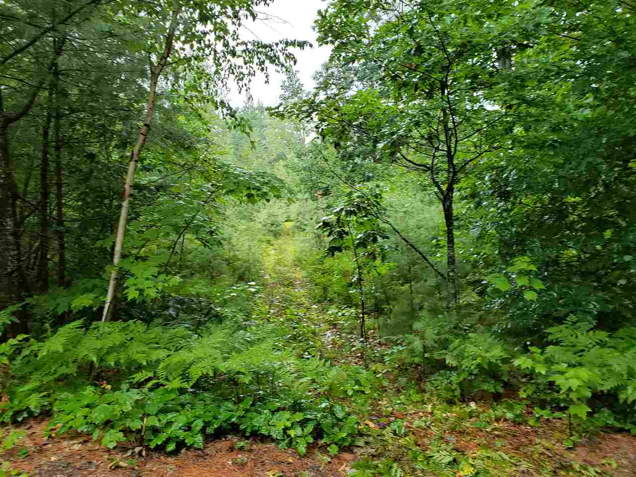 WAKEFIELD NH LAND  for sale $$38,900 | 0.23 Acres  | Price Per Acre $0
