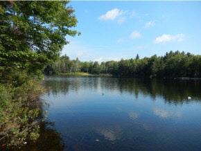 GRAFTON NHLAND  for sale $$55,000 | 0.79 Acres  | Price Per Acre $0