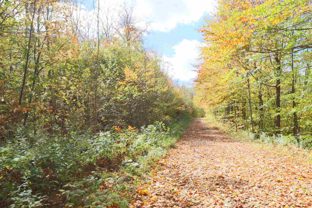 Reading VT 05062Land for sale $List Price is $54,000