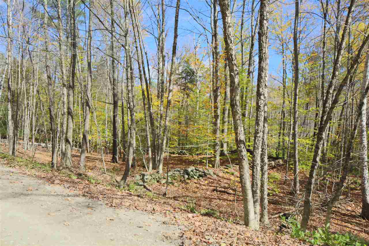 Reading VT 05062Land for sale $List Price is $42,000