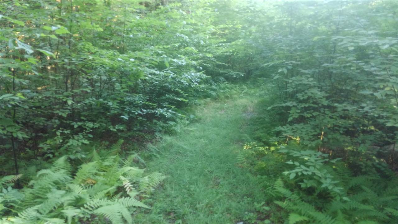 Acworth NH 03743 Land for sale $List Price is $14,700