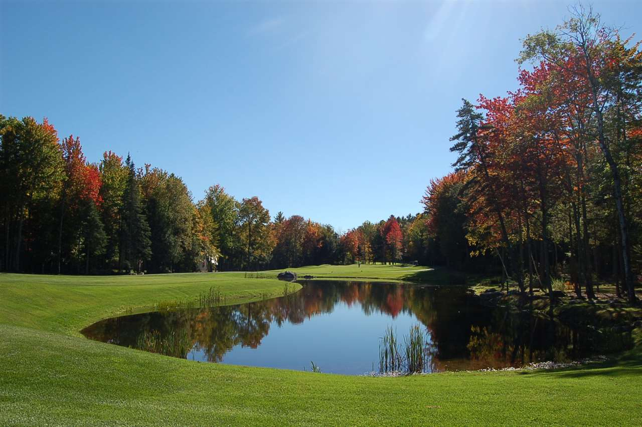 Village of Eastman in Town of Grantham NH  03753Land for sale $List Price is $59,000