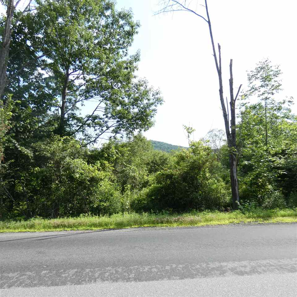 Springfield VT 05156 Land for sale $List Price is $59,900