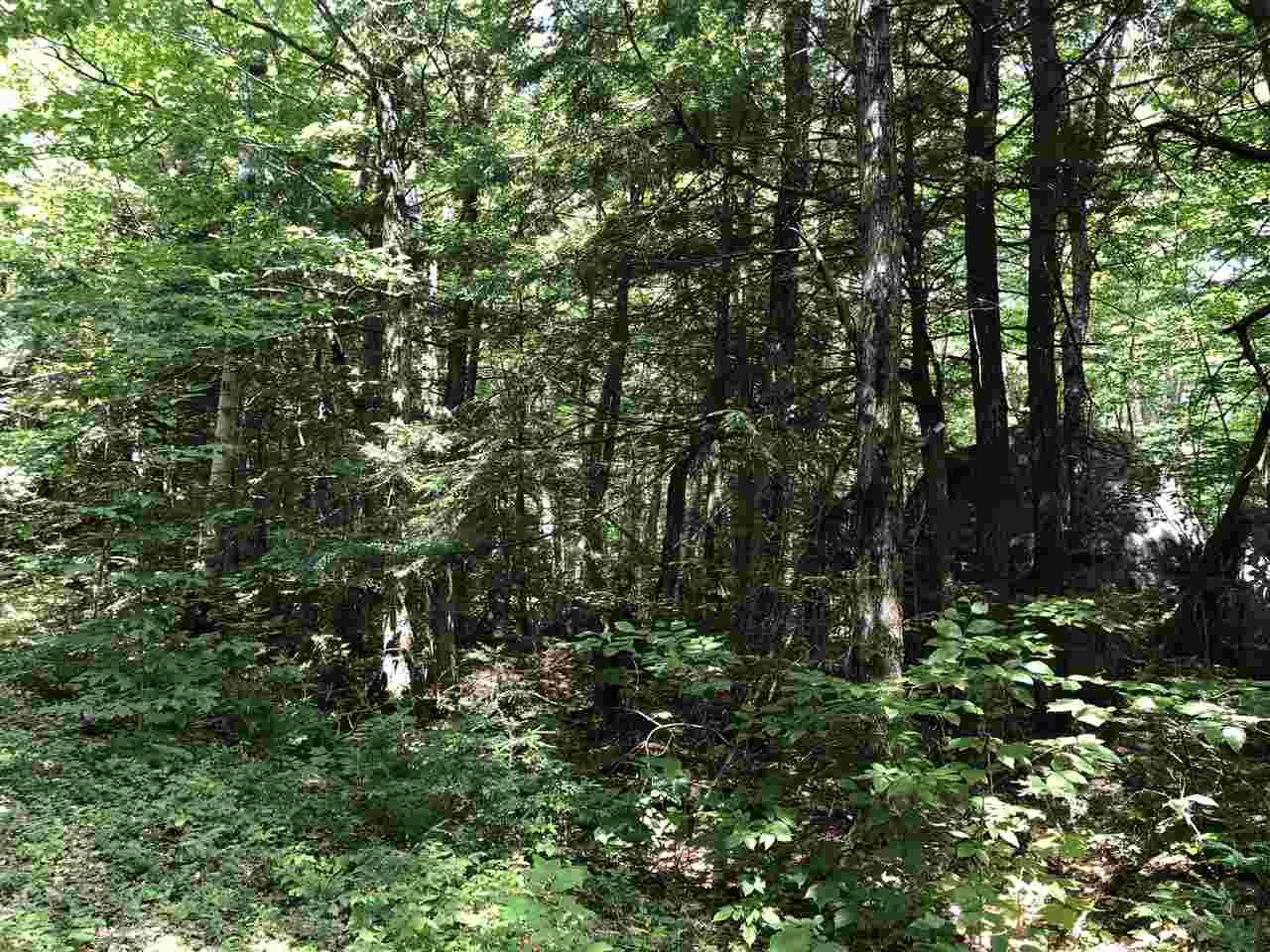 Village of Eastman in Town of Enfield NH  03748 Land for sale $List Price is $17,900
