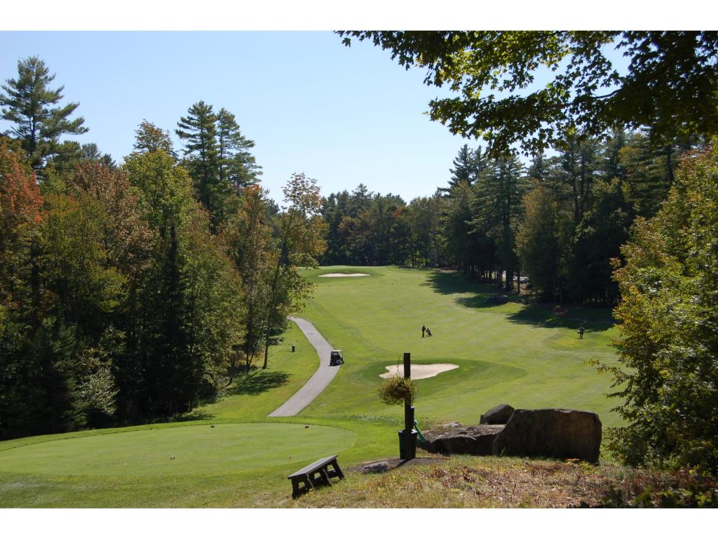 Village of Eastman in Town of Grantham NH  03753Land for sale $List Price is $79,065