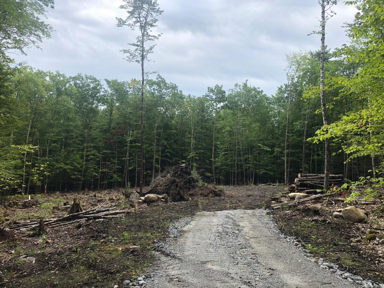 MOULTONBOROUGH NH LAND  for sale $179,000