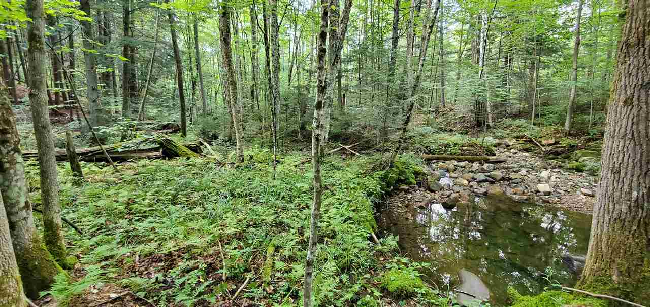 WALLINGFORD VT LAND  for sale $$149,500 | 33.64 Acres  | Price Per Acre $0  | Total Lots 2