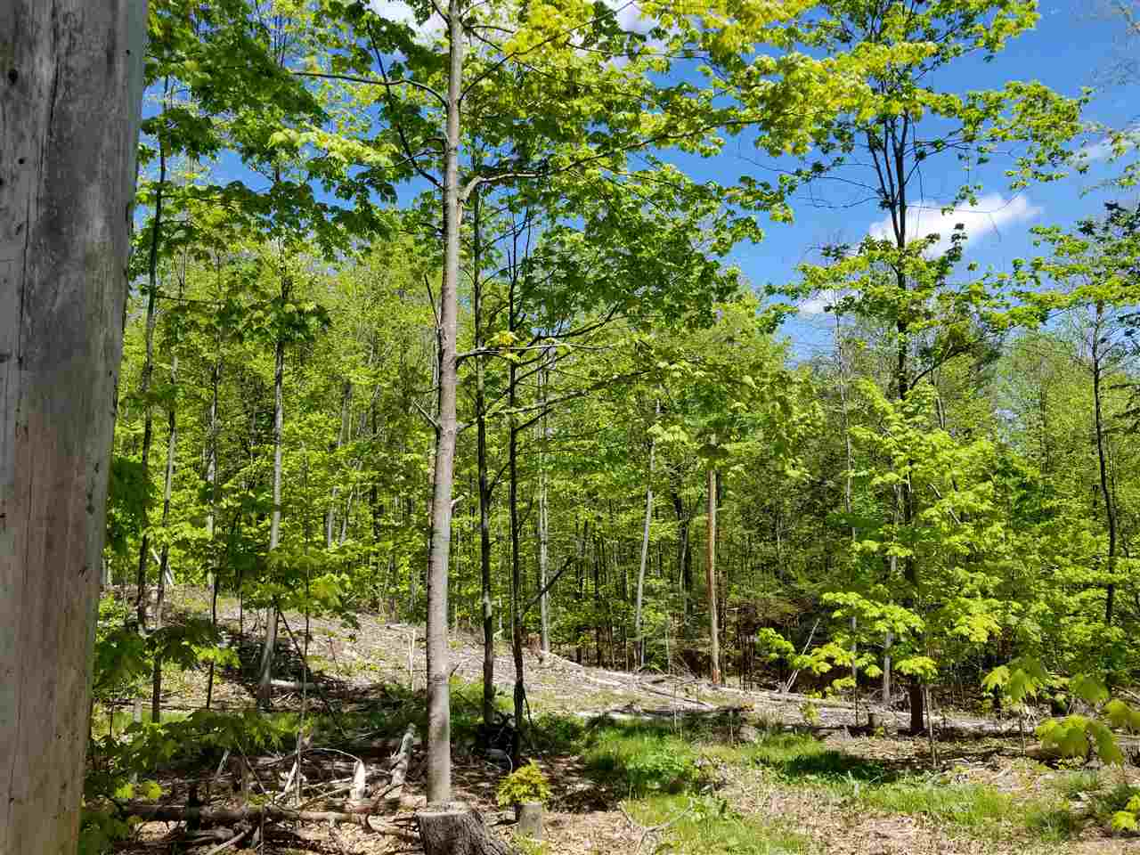 MLS 4774293: Lot 1-36 Trow Road, Mont Vernon NH