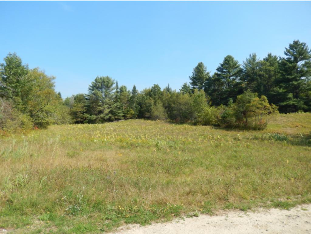 Canaan NH Land  for sale $39,500