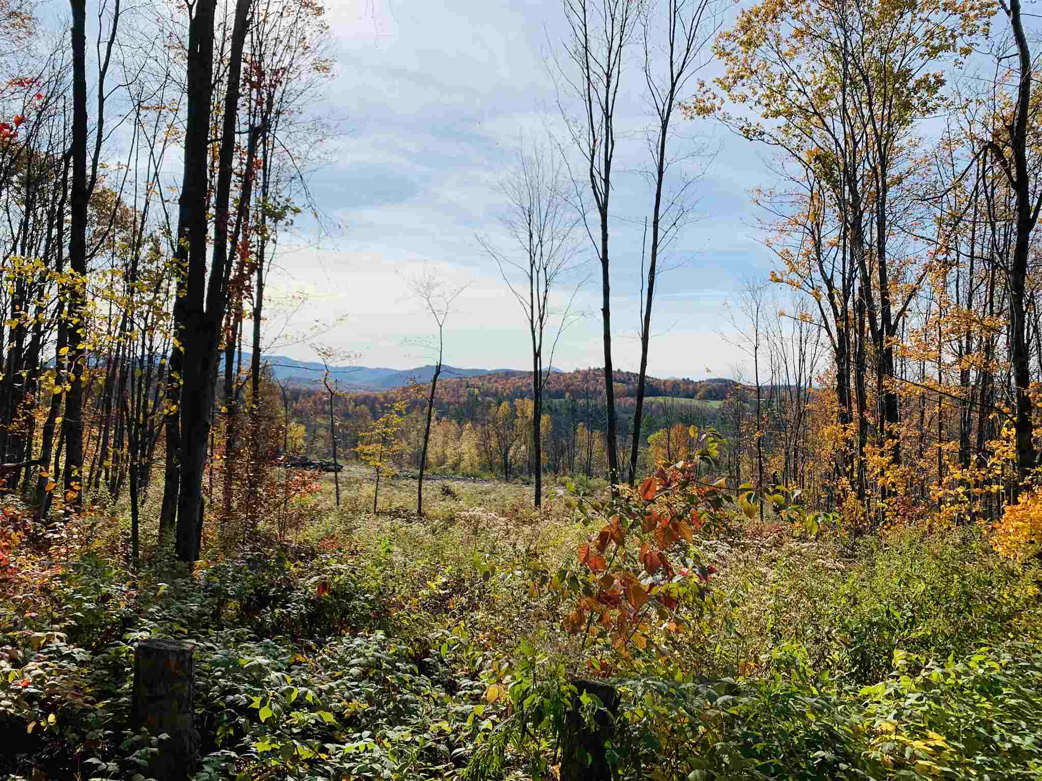 14,615 Maple taps on 300 acres, as reported by Greenleaf Forestry 9/17/19 Field Cruise Analysis. Expand or build your empire. Excellent Southern exposure, well sloped. Logging roads zig zag property for great access.  Mount Mansfield views. Deer yard and Beaver pond. Town allows for one residence to be built off primary access on Repa Road. Westford's Goodrich Trail crosses property. Town lists 300 acres, deed lists 281 acres.