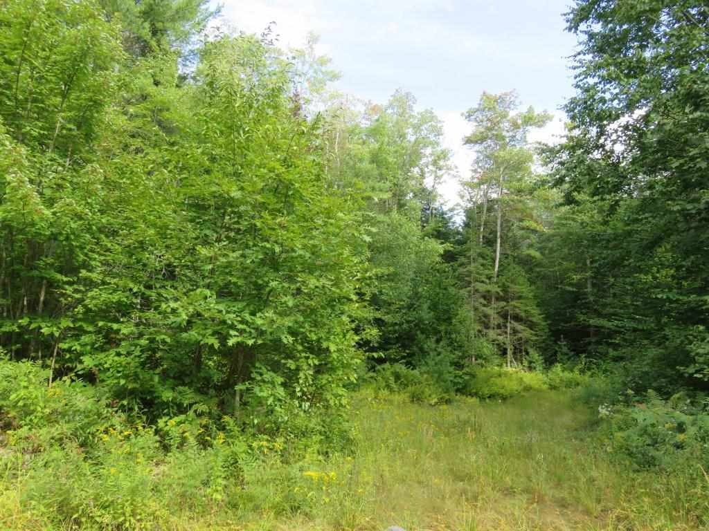 GRAFTON NH LAND  for sale $$129,500 | 69.7 Acres  | Price Per Acre $0  | Total Lots 2