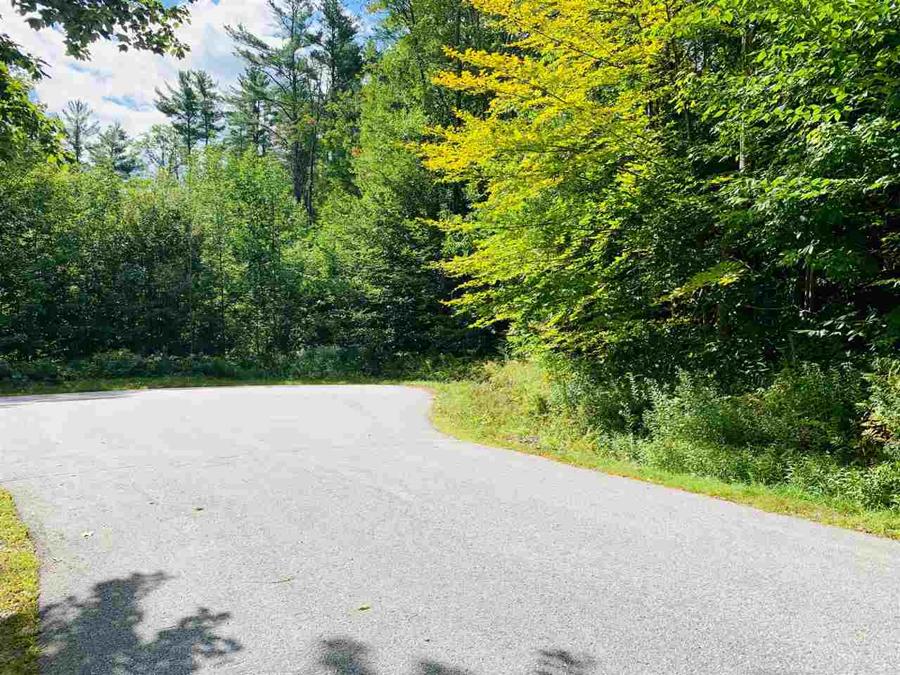 NEWBURY NH Land / Acres for sale