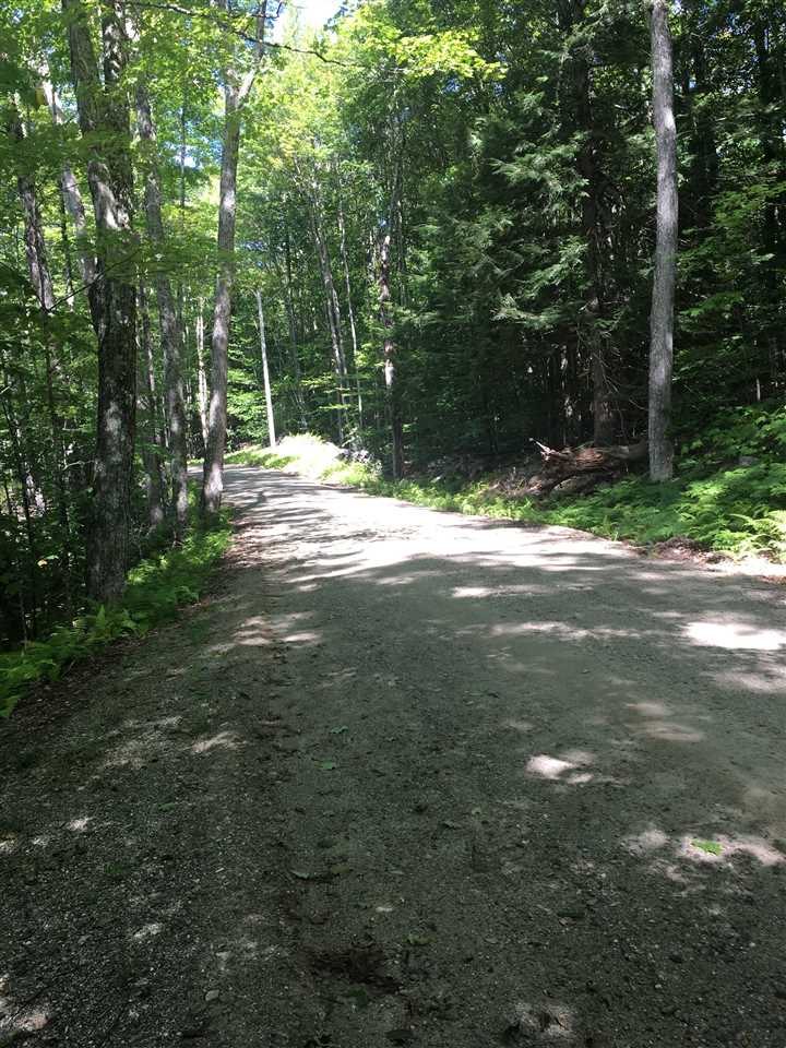 Acworth NH 03601Land for sale $List Price is $40,000