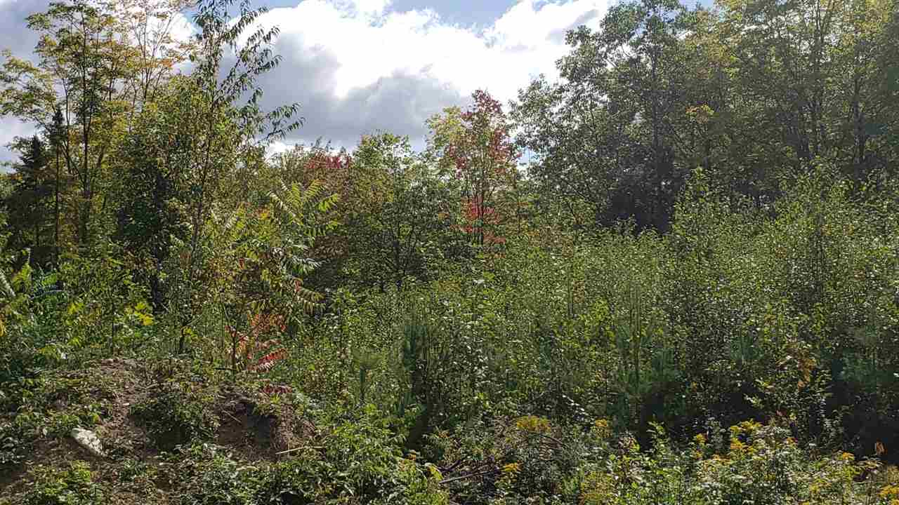 CROYDON NH LAND  for sale $$129,000 | 15.45 Acres  | Price Per Acre $0  | Total Lots 2