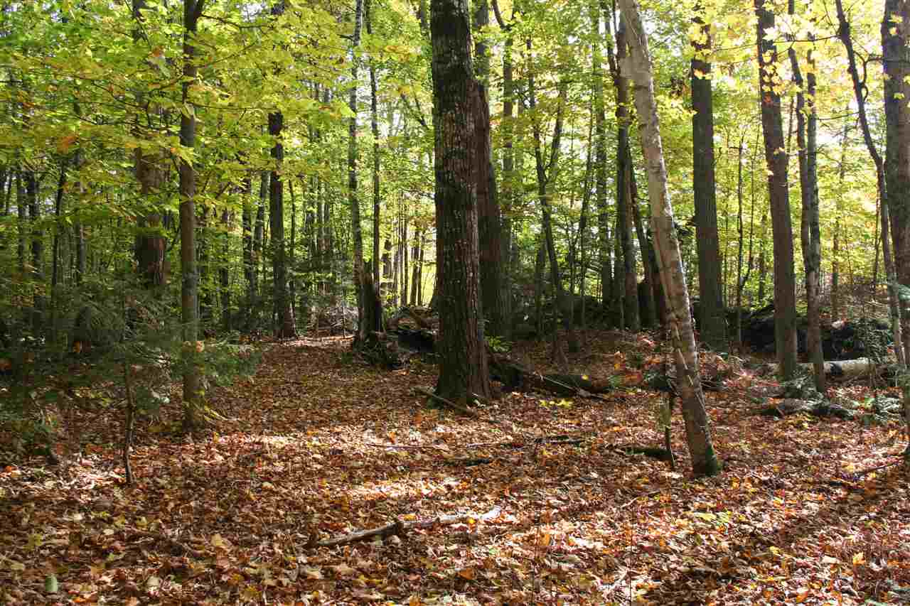 BARNARD VT LAND  for sale $$99,000 | 12.4 Acres  | Price Per Acre $0