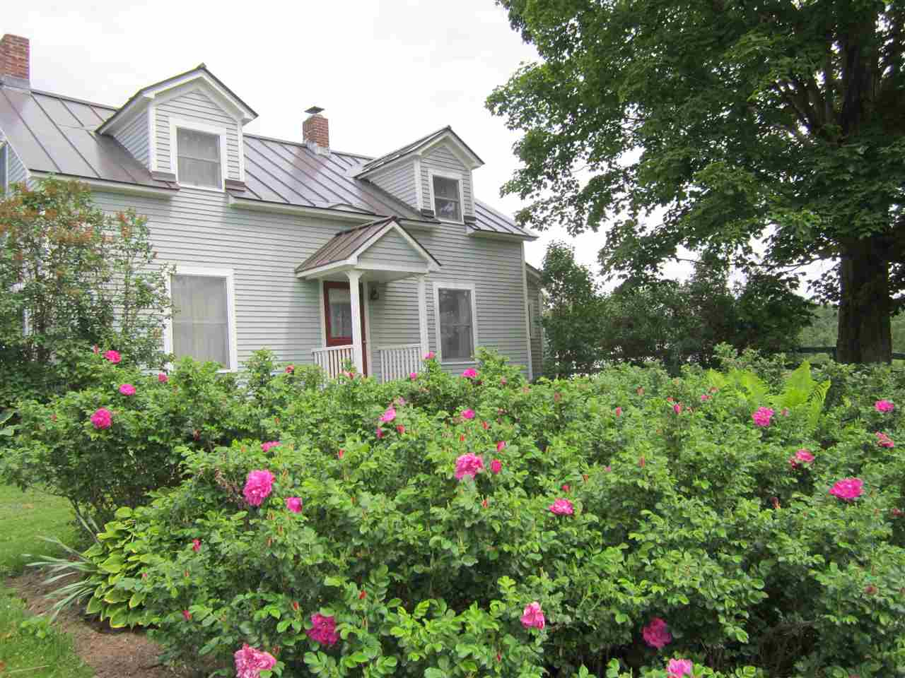 Front of House with Roses