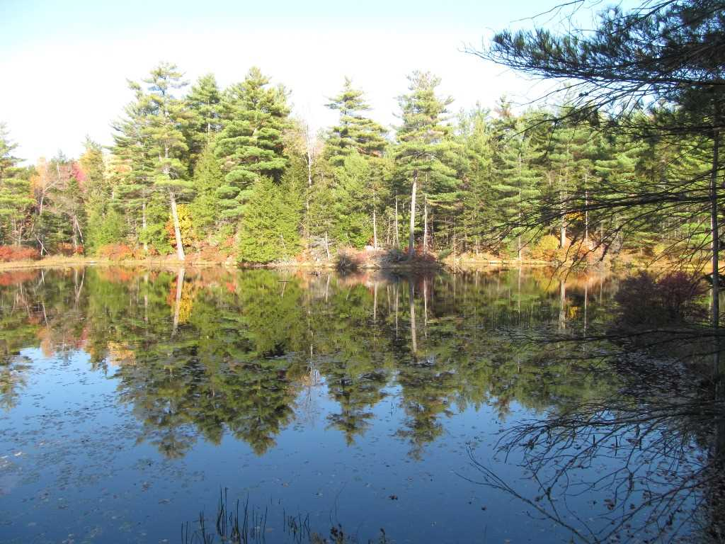 Claremont NH 03743 Land for sale $List Price is $225,000