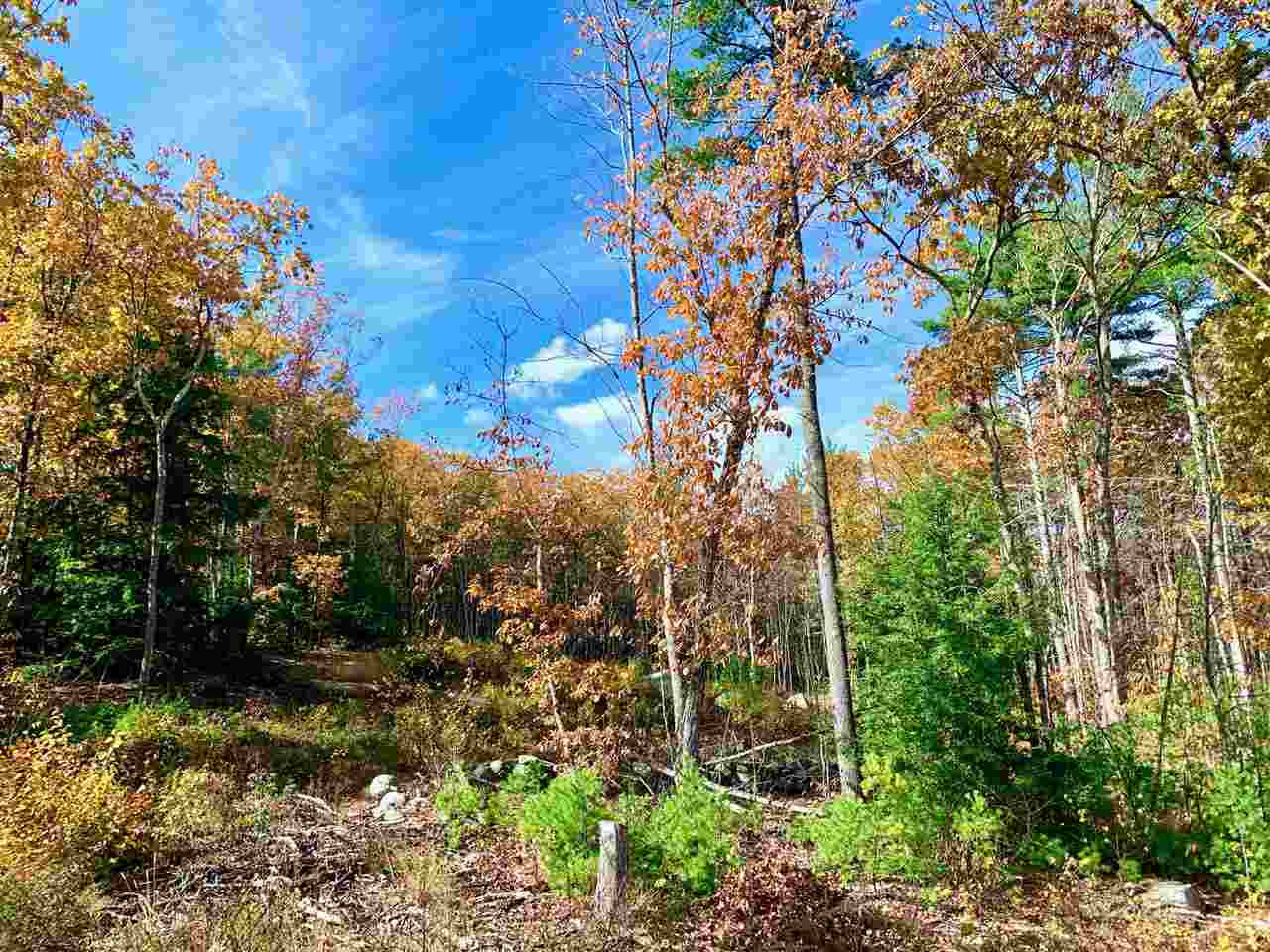 MLS 4783133: Lot 14 Trask Way, Amherst NH