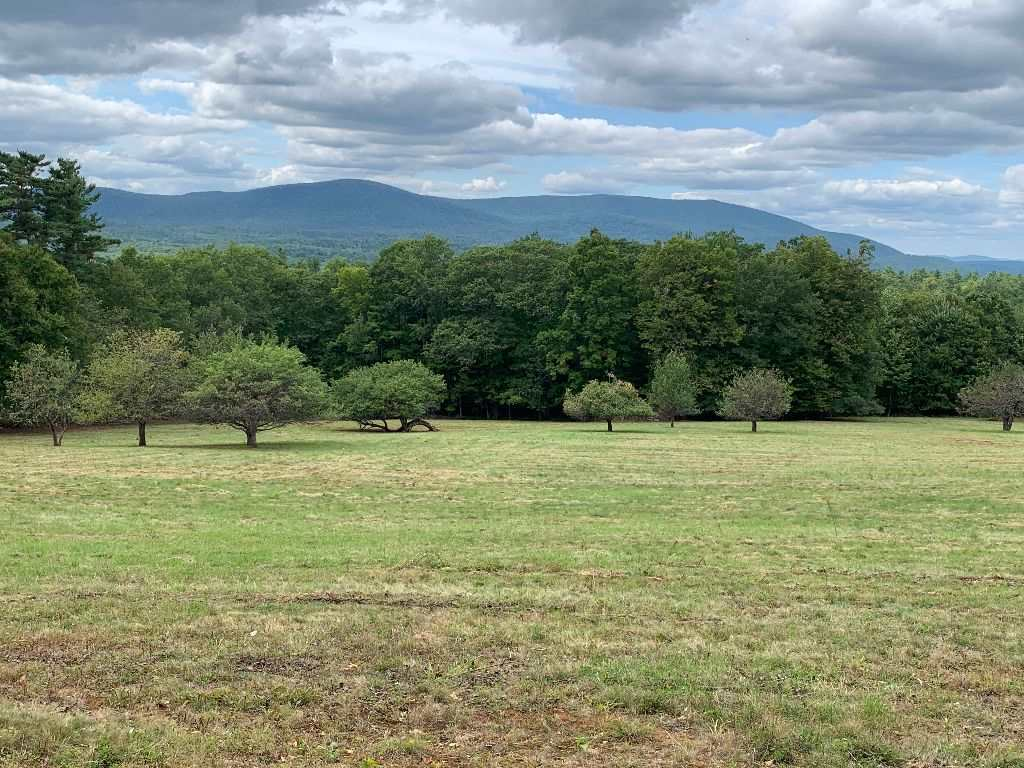 CANAAN NHLAND  for sale $$160,000   25.8 Acres    Price Per Acre $0