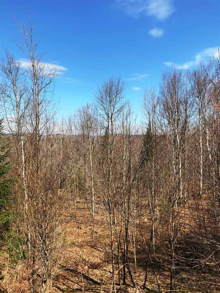 BETHLEHEM NH LAND  for sale $$55,000 | 11.05 Acres  | Price Per Acre $0