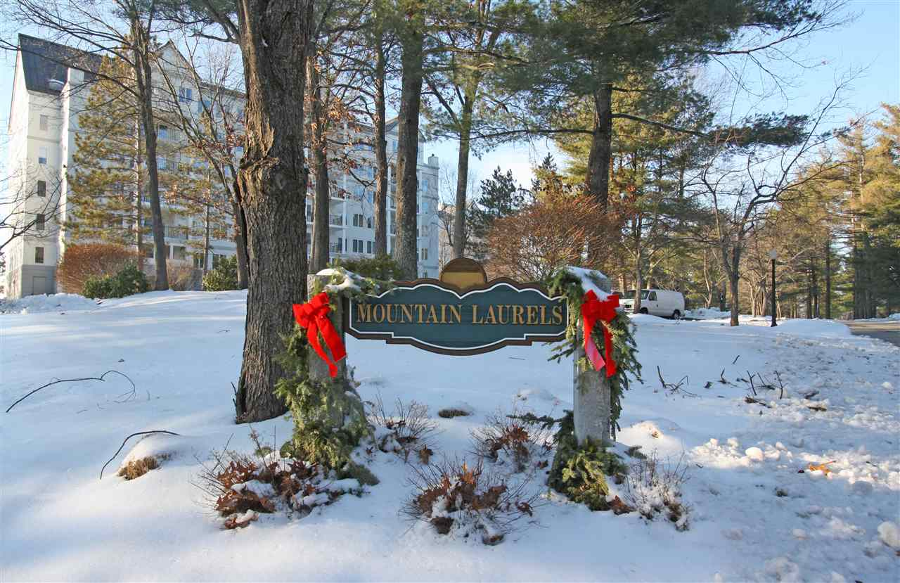 MLS 4789307: 10-502 Mt Laurels Drive-Unit 502, Nashua NH